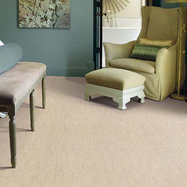 Caress Carpet by Shaw | Corning, NY